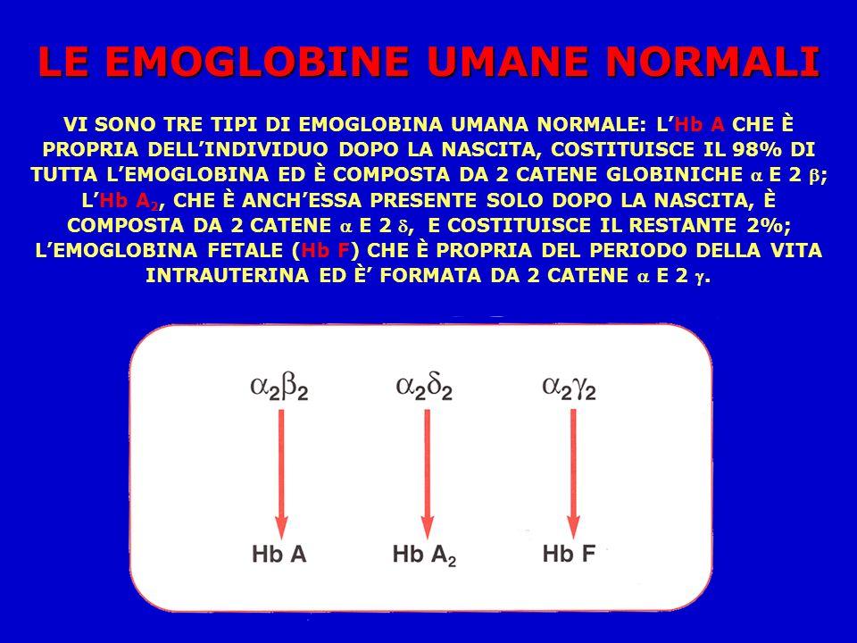 LE EMOGLOBINE UMANE NORMALI