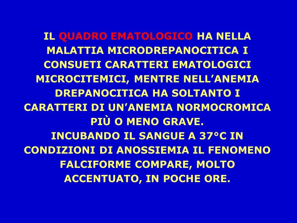 IL QUADRO EMATOLOGICO HA NELLA MALATTIA MICRODREPANOCITICA I CONSUETI CARATTERI EMATOLOGICI MICROCITEMICI, MENTRE NELL'ANEMIA DREPANOCITICA HA SOLTANTO I CARATTERI DI UN'ANEMIA NORMOCROMICA PIÙ O MENO GRAVE.