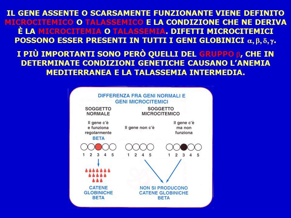 IL GENE ASSENTE O SCARSAMENTE FUNZIONANTE VIENE DEFINITO MICROCITEMICO O TALASSEMICO E LA CONDIZIONE CHE NE DERIVA È LA MICROCITEMIA O TALASSEMIA. DIFETTI MICROCITEMICI POSSONO ESSER PRESENTI IN TUTTI I GENI GLOBINICI a, b, d, g.