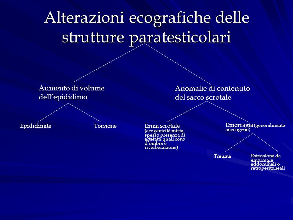 Alterazioni ecografiche delle strutture paratesticolari