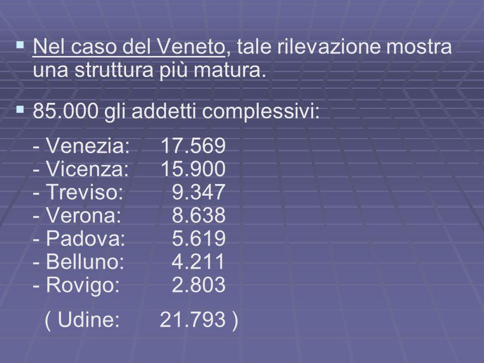 Nel caso del Veneto, tale rilevazione mostra una struttura più matura.