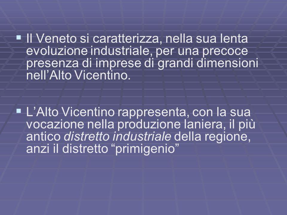 Il Veneto si caratterizza, nella sua lenta evoluzione industriale, per una precoce presenza di imprese di grandi dimensioni nell'Alto Vicentino.