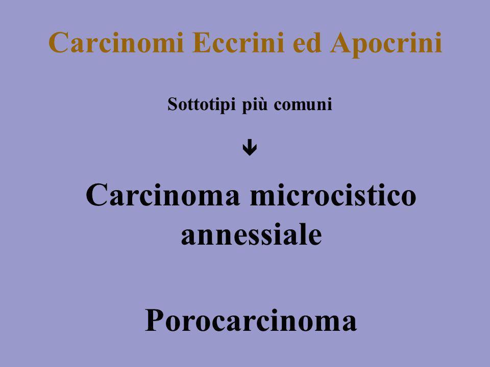 Carcinomi Eccrini ed Apocrini