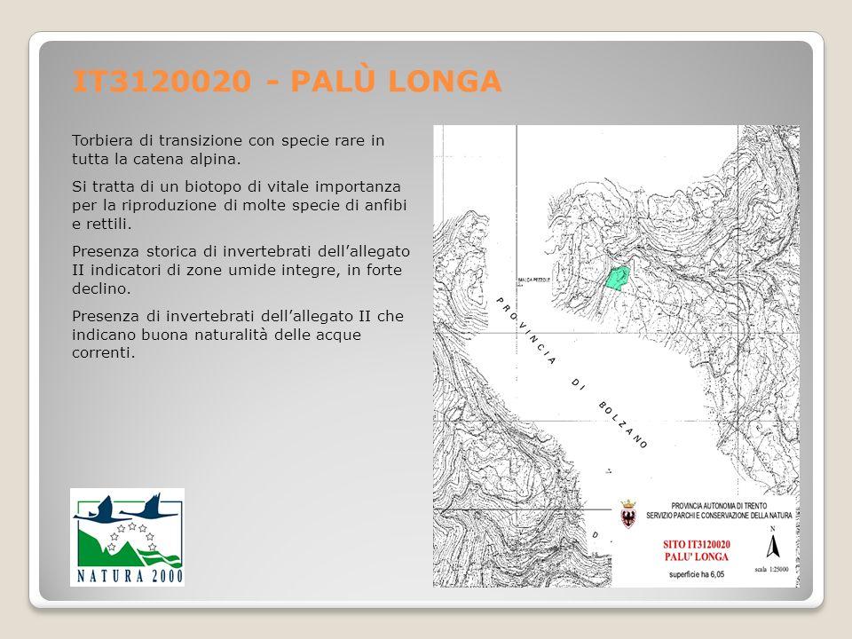 IT3120020 - PALÙ LONGA Torbiera di transizione con specie rare in tutta la catena alpina.
