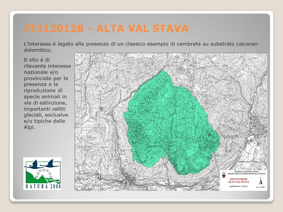 IT3120128 - ALTA VAL STAVA L'interesse è legato alla presenza di un classico esempio di cembreta su substrato calcareo-dolomitico.