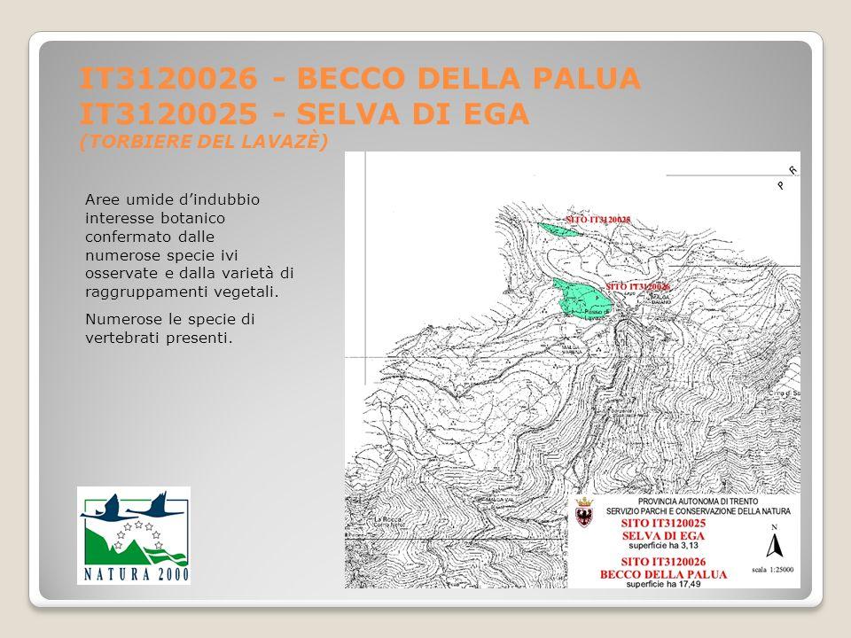 IT3120026 - BECCO DELLA PALUA IT3120025 - SELVA DI EGA (TORBIERE DEL LAVAZÈ)