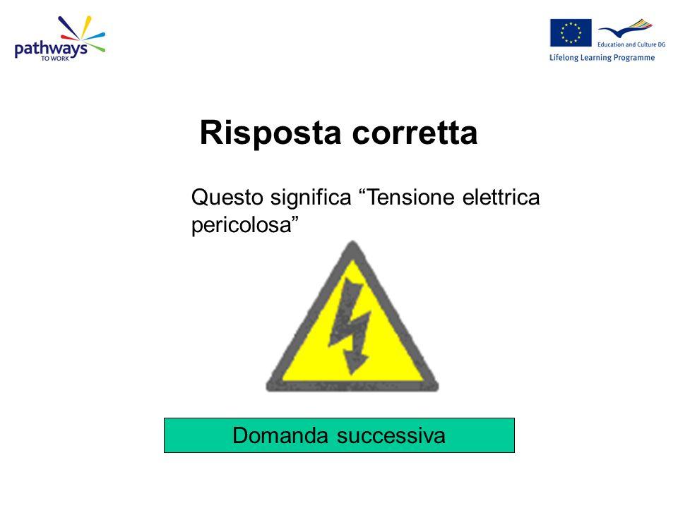 Risposta corretta Questo significa Tensione elettrica pericolosa