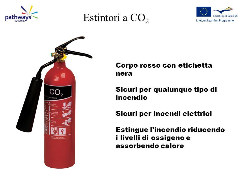 Estintori a CO2 Corpo rosso con etichetta nera
