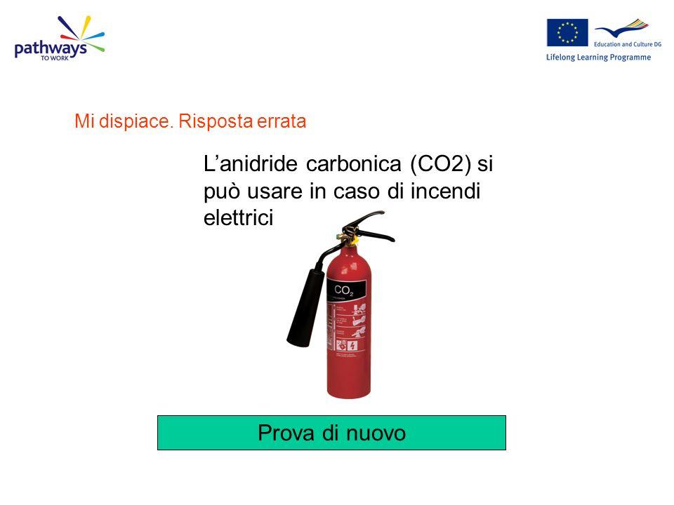 L'anidride carbonica (CO2) si può usare in caso di incendi elettrici