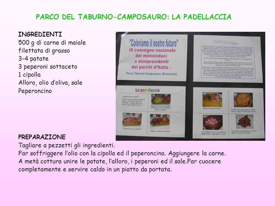 PARCO DEL TABURNO-CAMPOSAURO: LA PADELLACCIA
