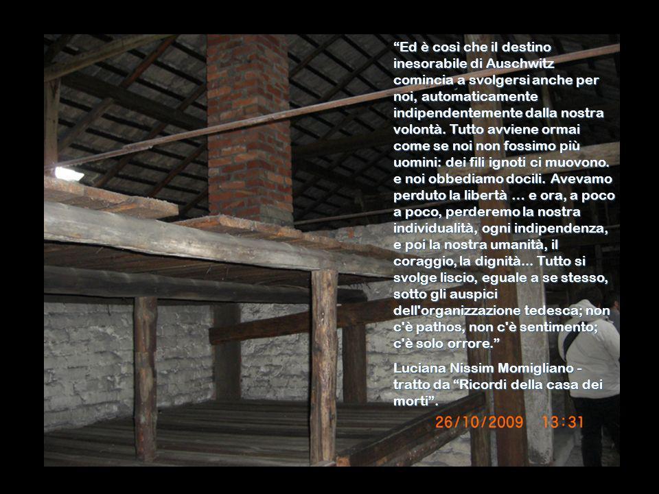 Ed è così che il destino inesorabile di Auschwitz comincia a svolgersi anche per noi, automaticamente indipendentemente dalla nostra volontà. Tutto avviene ormai come se noi non fossimo più uomini: dei fili ignoti ci muovono. e noi obbediamo docili. Avevamo perduto la libertà … e ora, a poco a poco, perderemo la nostra individualità, ogni indipendenza, e poi la nostra umanità, il coraggio, la dignità... Tutto si svolge liscio, eguale a se stesso, sotto gli auspici dell organizzazione tedesca; non c è pathos, non c è sentimento; c è solo orrore.