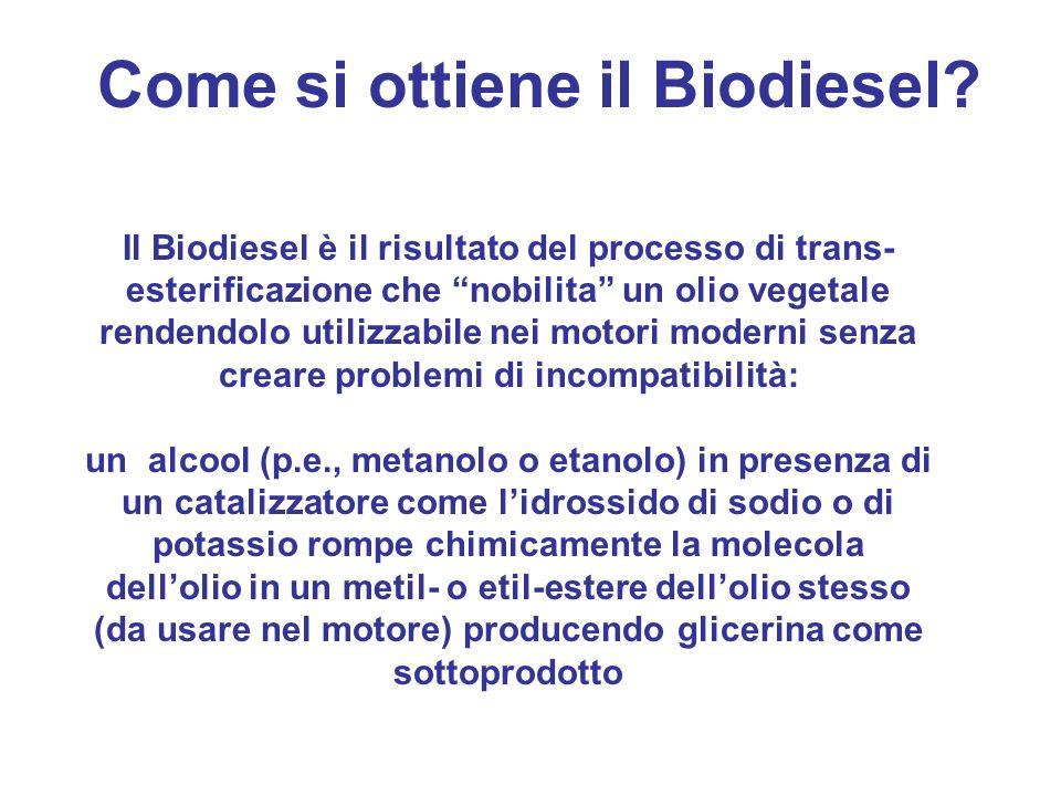 Come si ottiene il Biodiesel