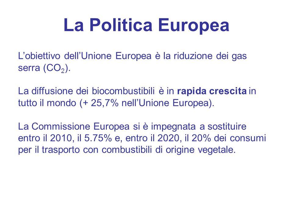 La Politica Europea L'obiettivo dell'Unione Europea è la riduzione dei gas serra (CO2).