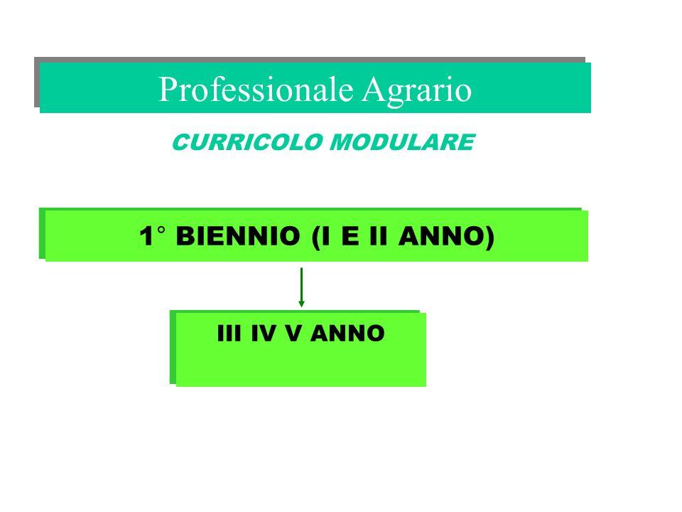 Professionale Agrario