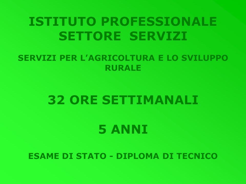 ISTITUTO PROFESSIONALE SETTORE SERVIZI 32 ORE SETTIMANALI 5 ANNI