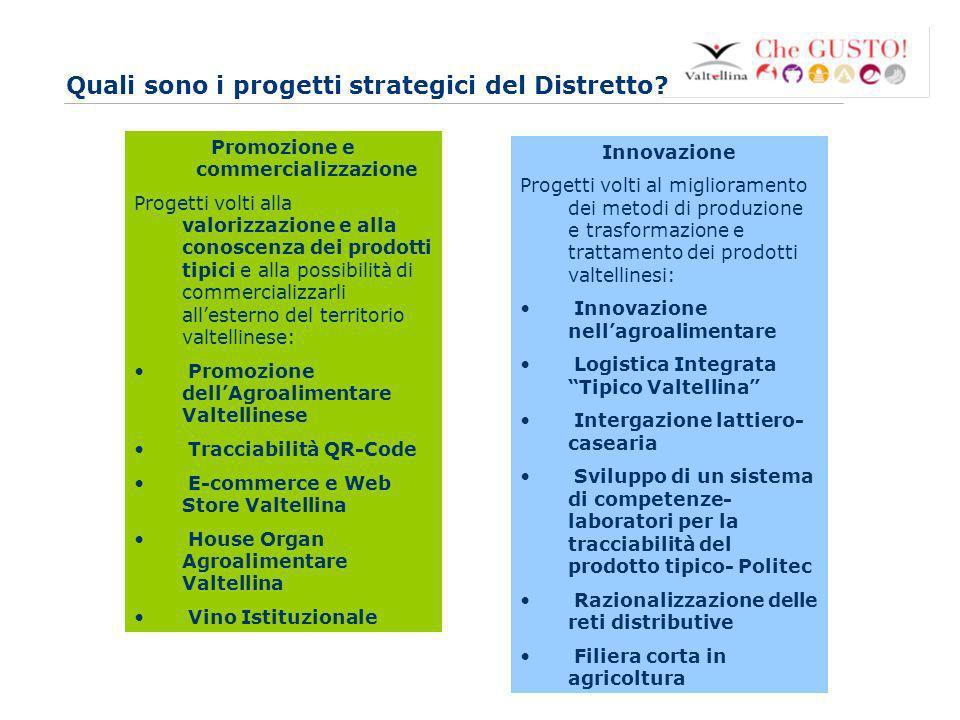 Quali sono i progetti strategici del Distretto