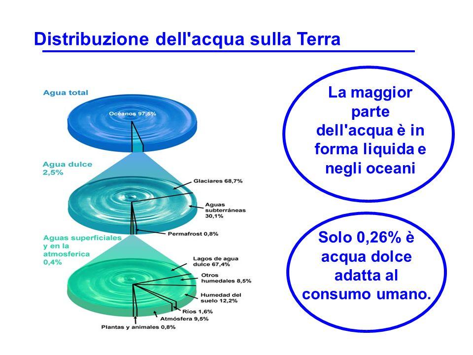 Distribuzione dell acqua sulla Terra
