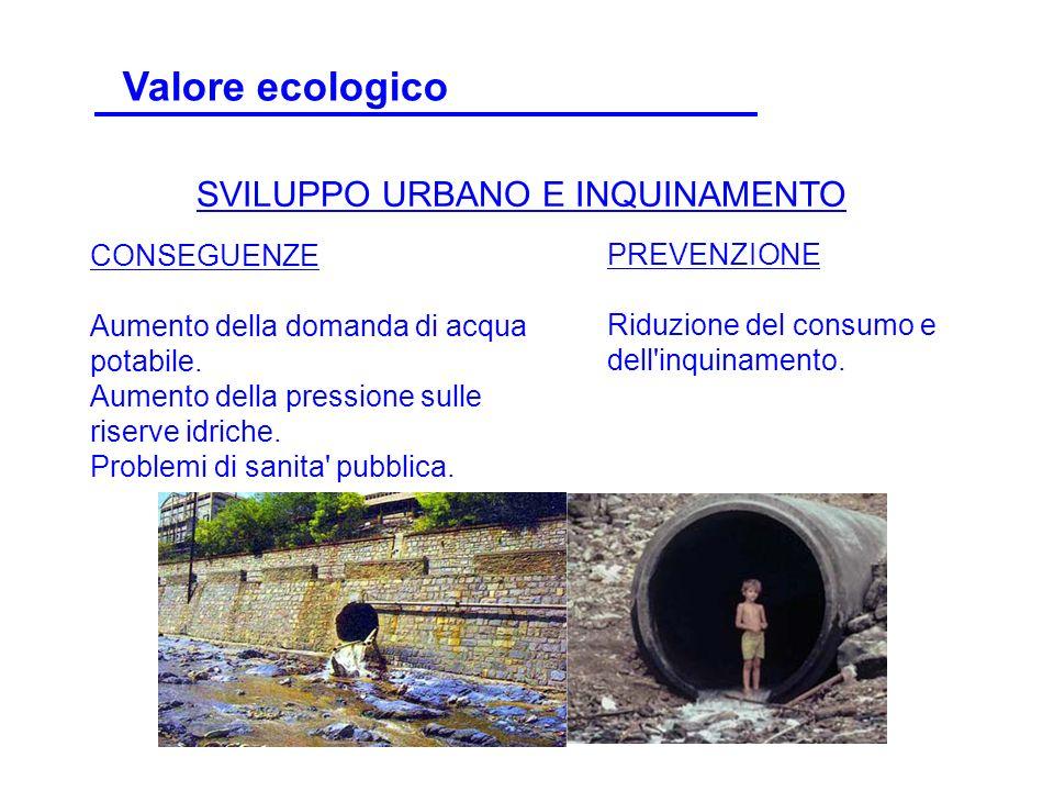 Valore ecologico SVILUPPO URBANO E INQUINAMENTO