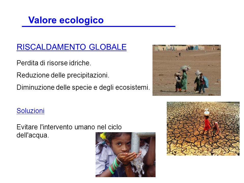 Valore ecologico RISCALDAMENTO GLOBALE