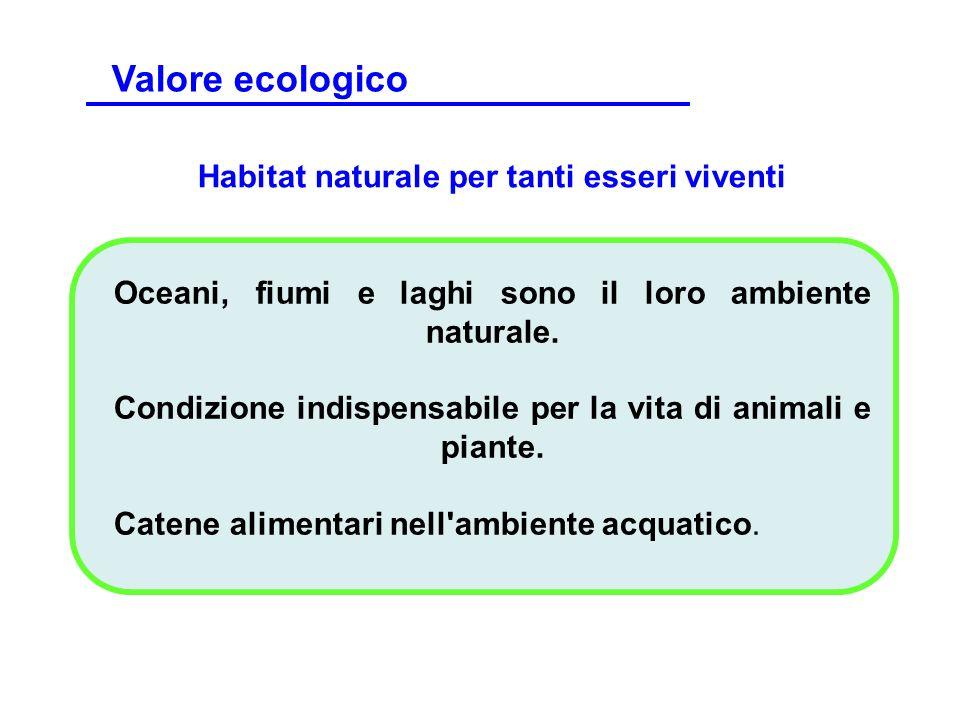 Habitat naturale per tanti esseri viventi