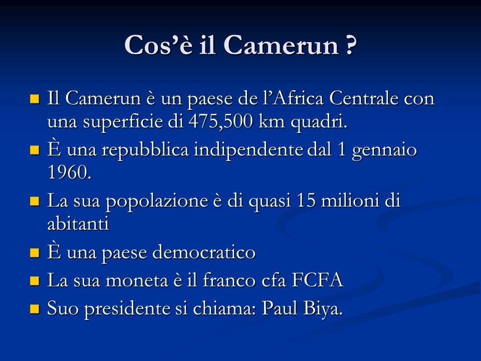 Cos'è il Camerun Il Camerun è un paese de l'Africa Centrale con una superficie di 475,500 km quadri.