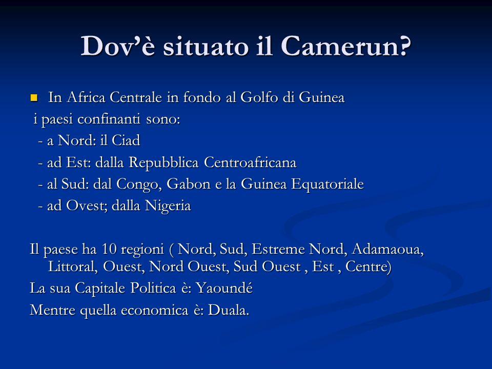 Dov'è situato il Camerun
