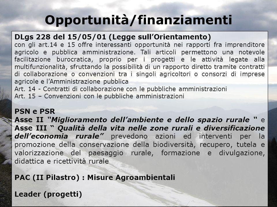 Opportunità/finanziamenti