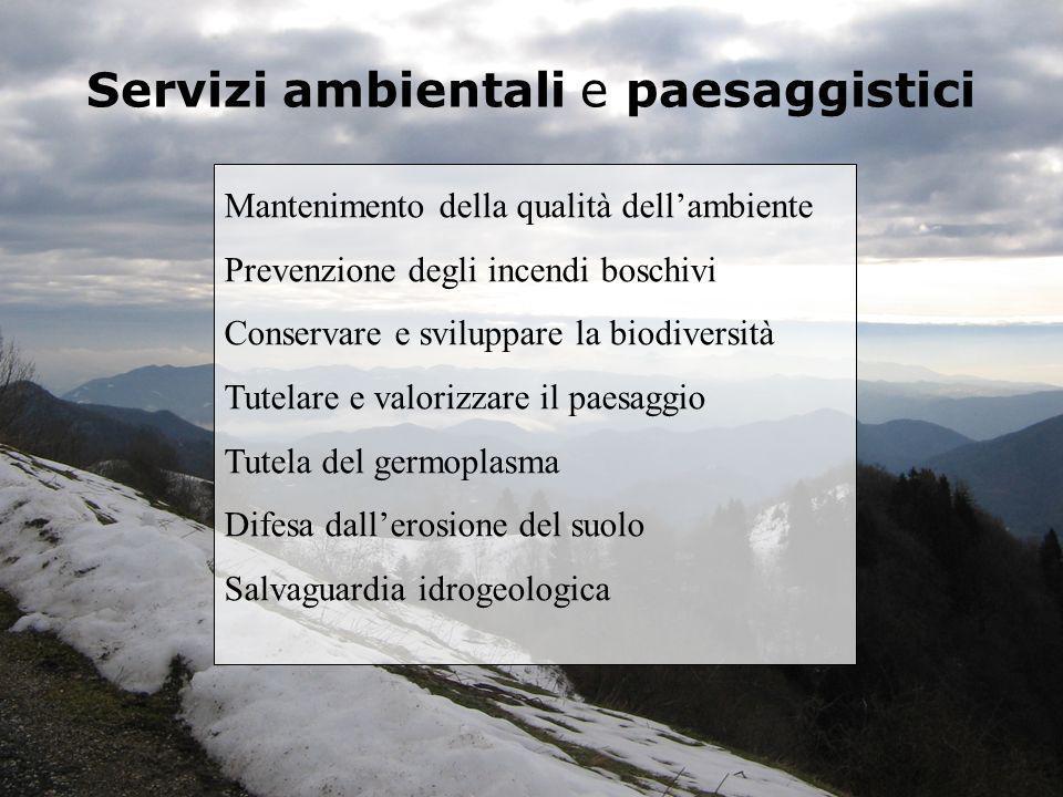 Servizi ambientali e paesaggistici