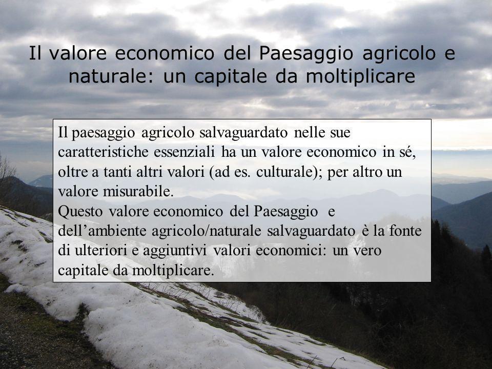 Il valore economico del Paesaggio agricolo e naturale: un capitale da moltiplicare