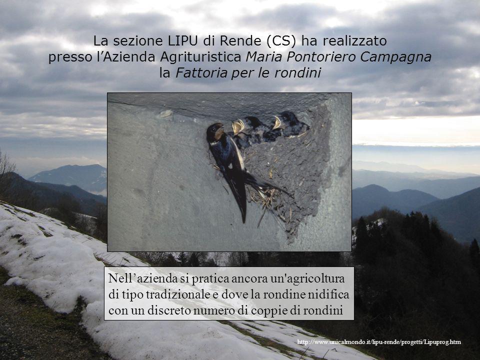 La sezione LIPU di Rende (CS) ha realizzato