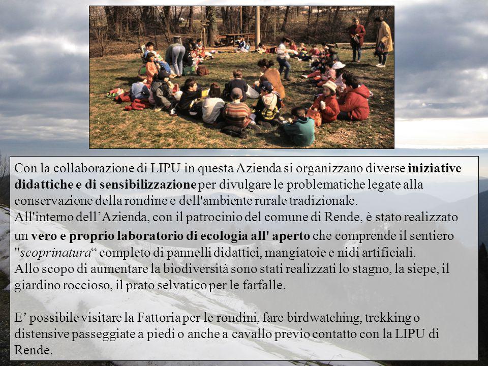 Con la collaborazione di LIPU in questa Azienda si organizzano diverse iniziative didattiche e di sensibilizzazione per divulgare le problematiche legate alla conservazione della rondine e dell ambiente rurale tradizionale.