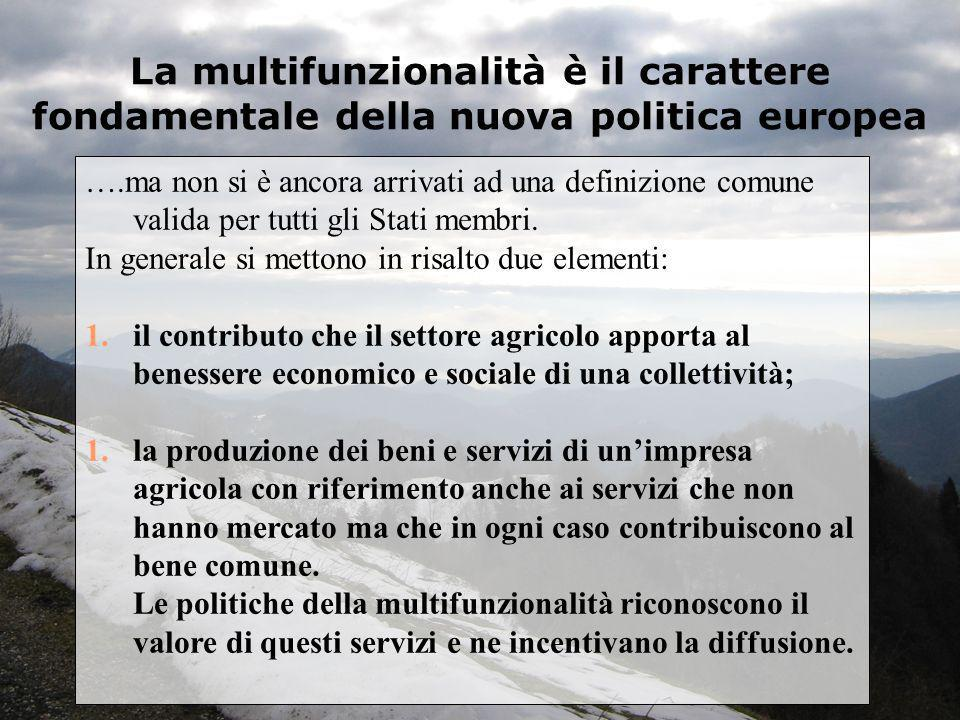 La multifunzionalità è il carattere fondamentale della nuova politica europea