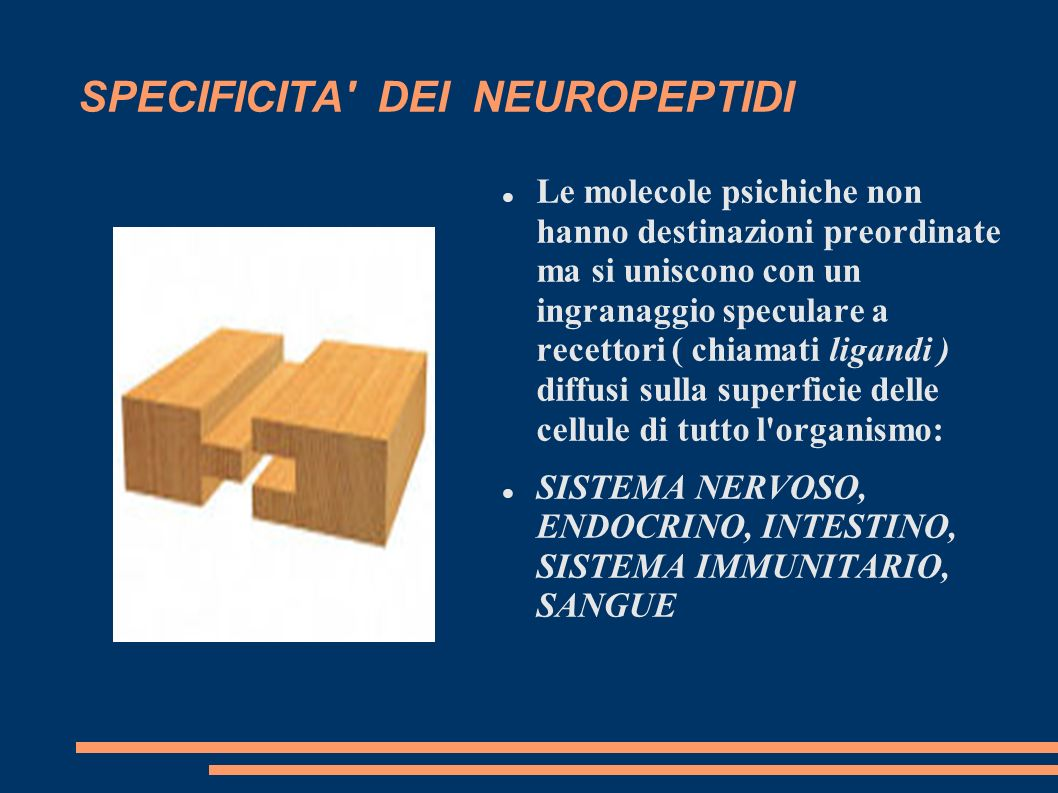 SPECIFICITA DEI NEUROPEPTIDI