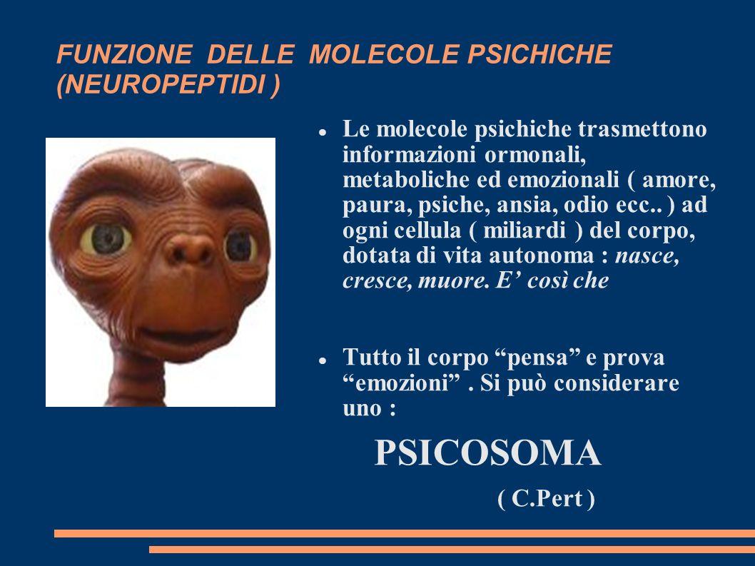 FUNZIONE DELLE MOLECOLE PSICHICHE (NEUROPEPTIDI )