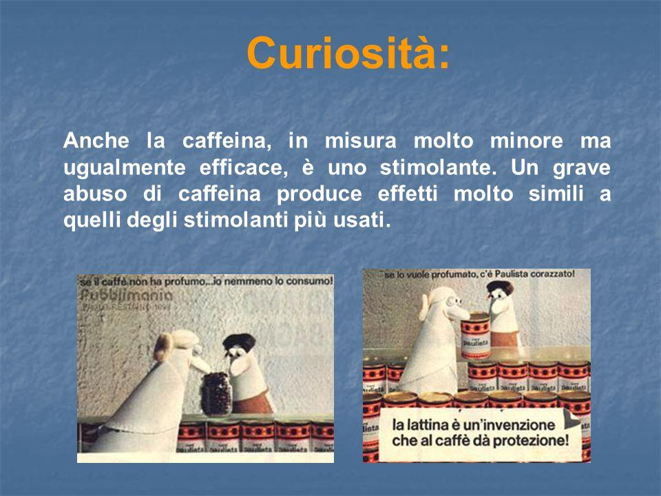 Curiosità: