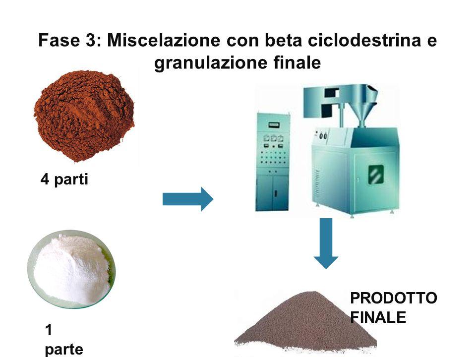 Fase 3: Miscelazione con beta ciclodestrina e granulazione finale