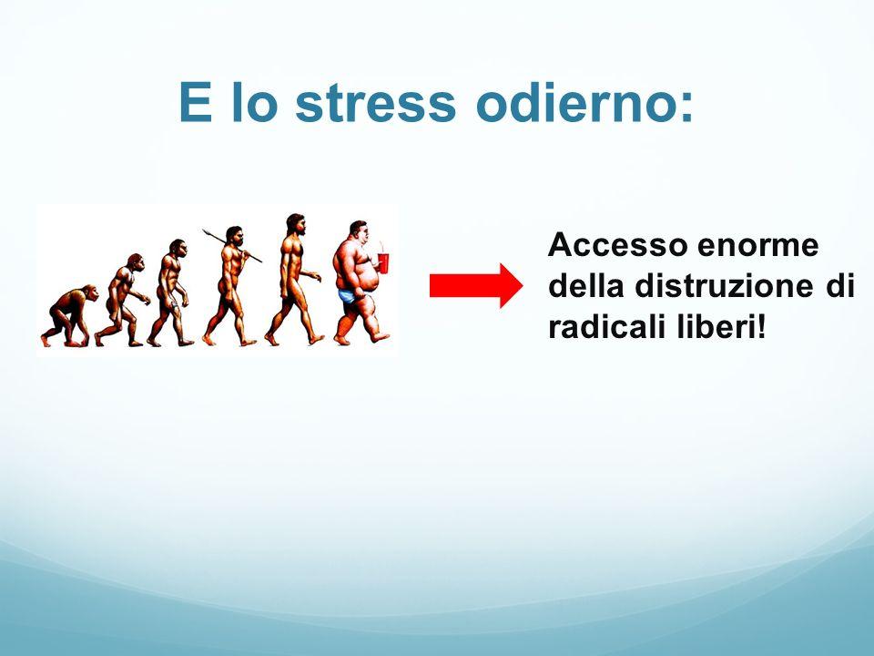 E lo stress odierno: Accesso enorme della distruzione di radicali liberi!