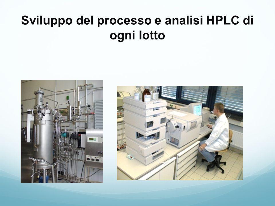 Sviluppo del processo e analisi HPLC di ogni lotto