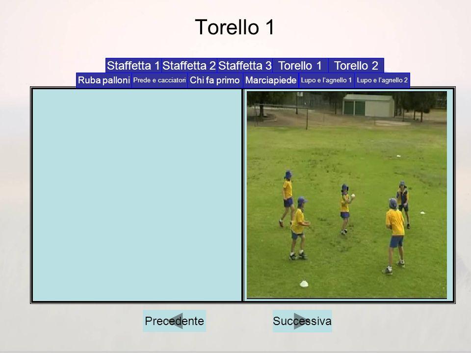 Torello 1 Staffetta 1 Staffetta 2 Staffetta 3 Torello 1 Torello 2