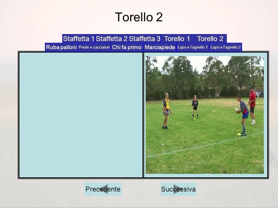 Torello 2 Staffetta 1 Staffetta 2 Staffetta 3 Torello 1 Torello 2