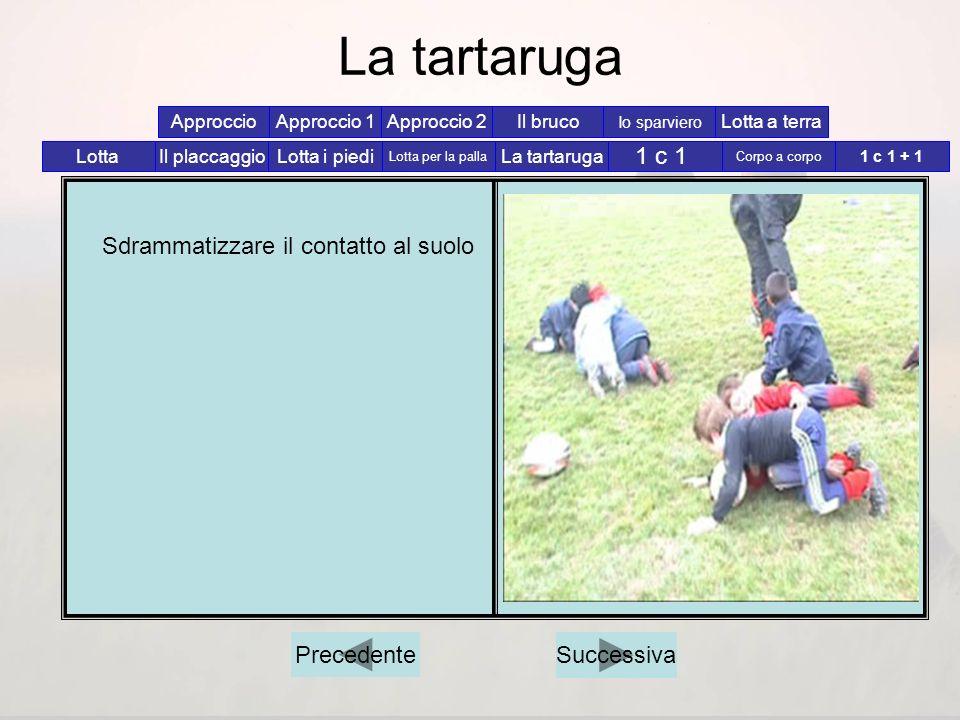 La tartaruga 1 c 1 Sdrammatizzare il contatto al suolo Precedente