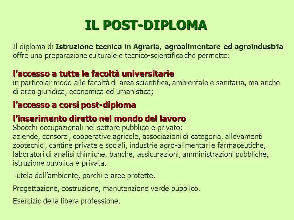 IL POST-DIPLOMA l'accesso a tutte le facoltà universitarie