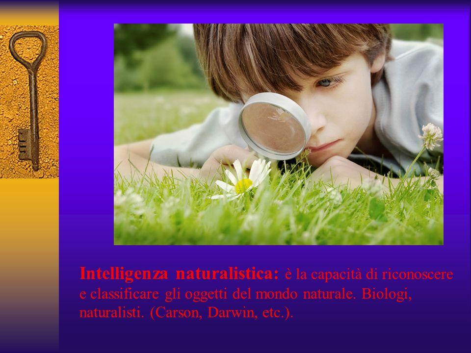 Intelligenza naturalistica: è la capacità di riconoscere e classificare gli oggetti del mondo naturale.