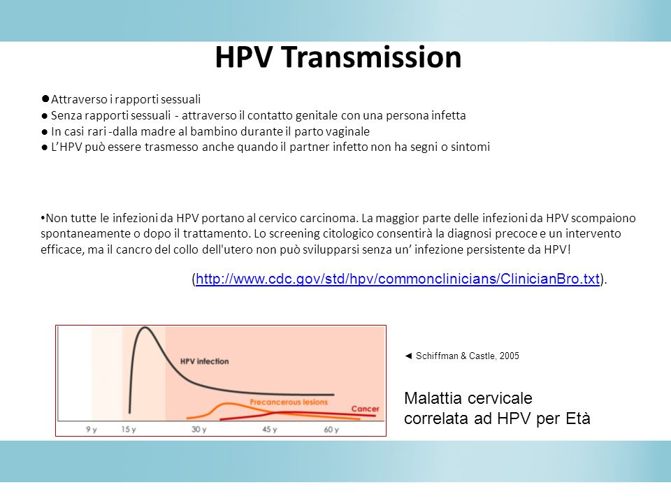 HPV Transmission