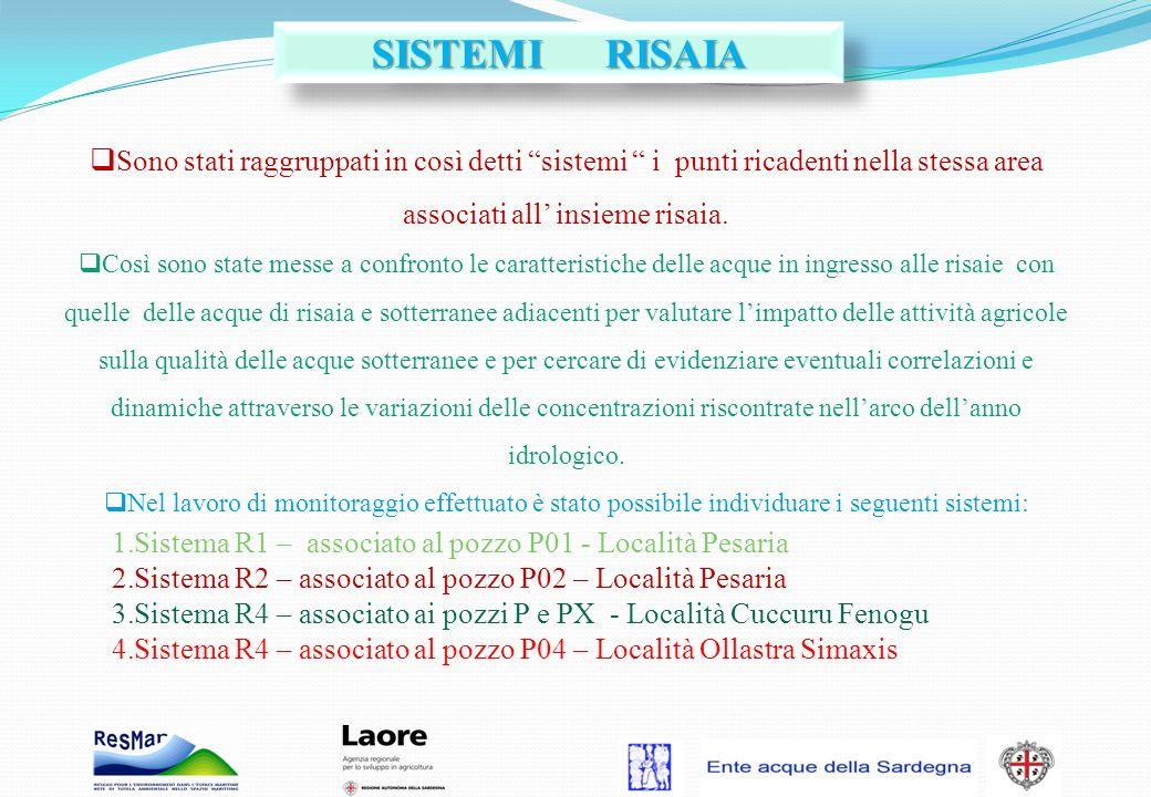 SISTEMI RISAIA Sono stati raggruppati in così detti sistemi i punti ricadenti nella stessa area associati all' insieme risaia.