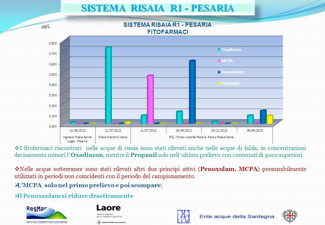 SISTEMA RISAIA R1 - PESARIA
