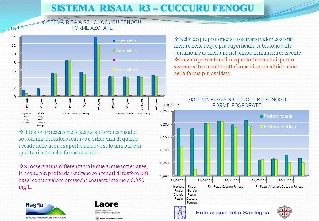 SISTEMA RISAIA R3 – CUCCURU FENOGU