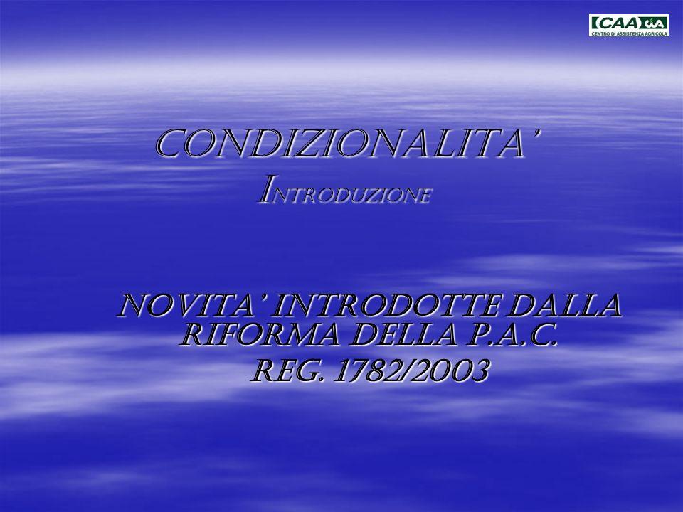 CONDIZIONALITA' INTRODUZIONE