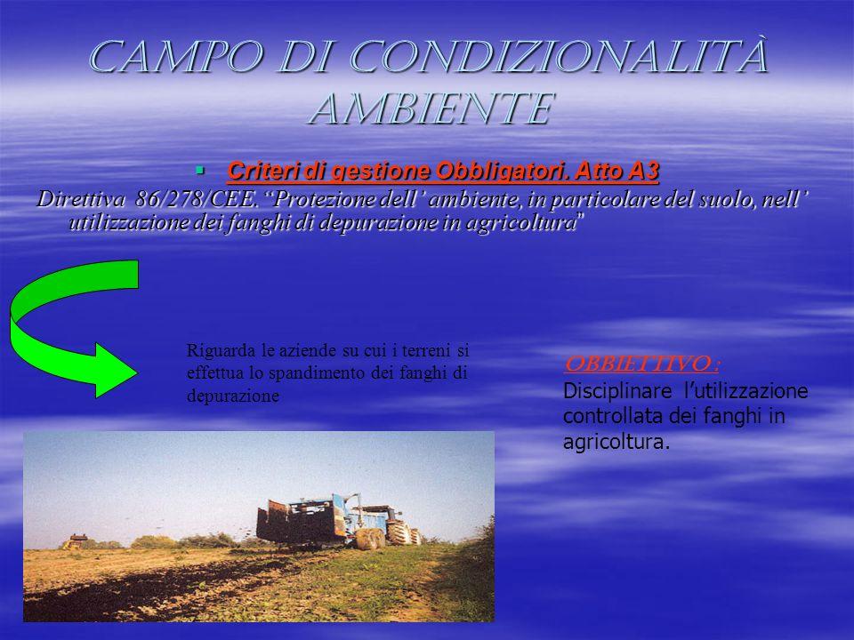 Campo di condizionalità Ambiente