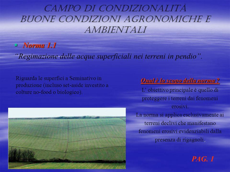 Campo di condizionalità buone condizioni agronomiche e ambientali